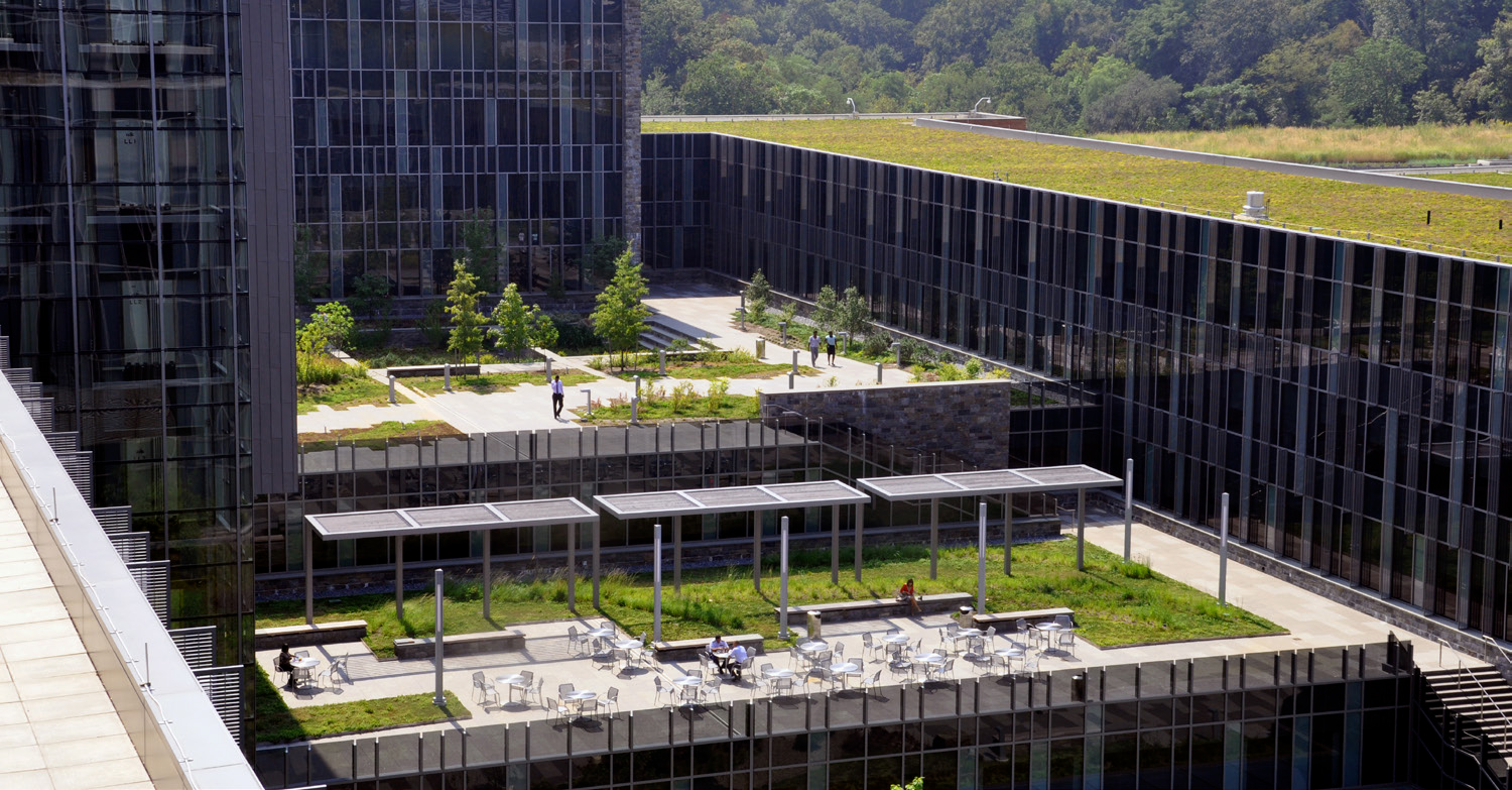 U.S. Coast Guard Headquarters Green Roof